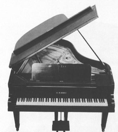 楽器の事典ピアノ 第2章 黄金期を迎えた19世紀・20世紀 13 ストリンギング アグラッフェ